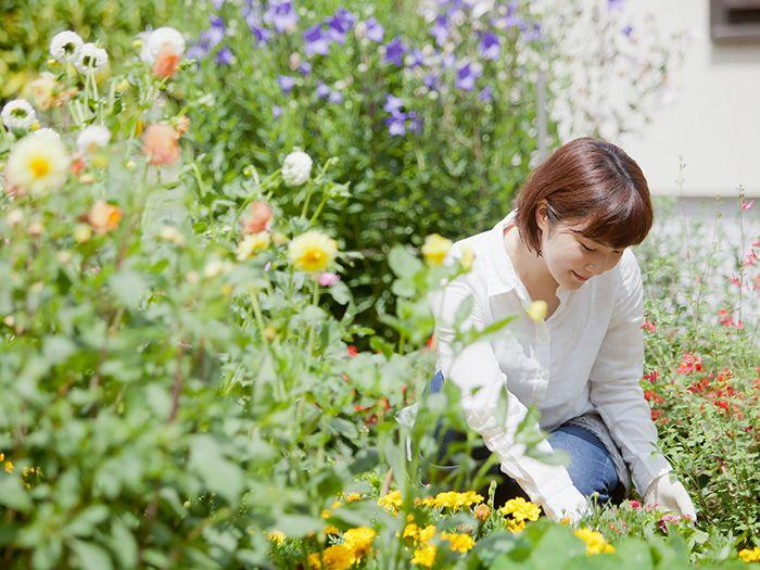 庭の手入れをする女性