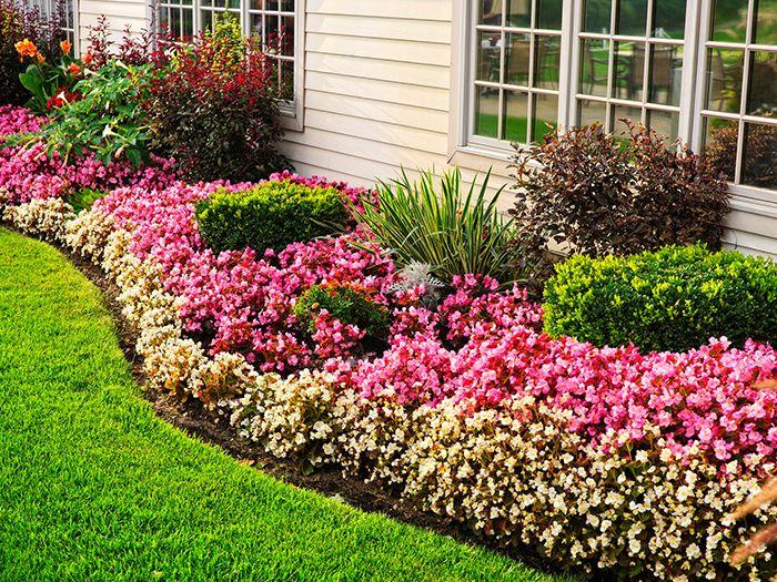 住宅の庭の花壇